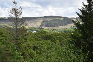 Killoran House Garden Bench View 01