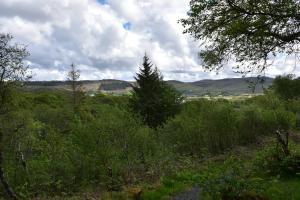 Killoran House Garden Bench View 02