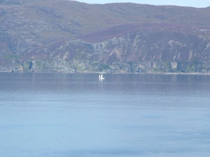 Sound of Mull (2009)